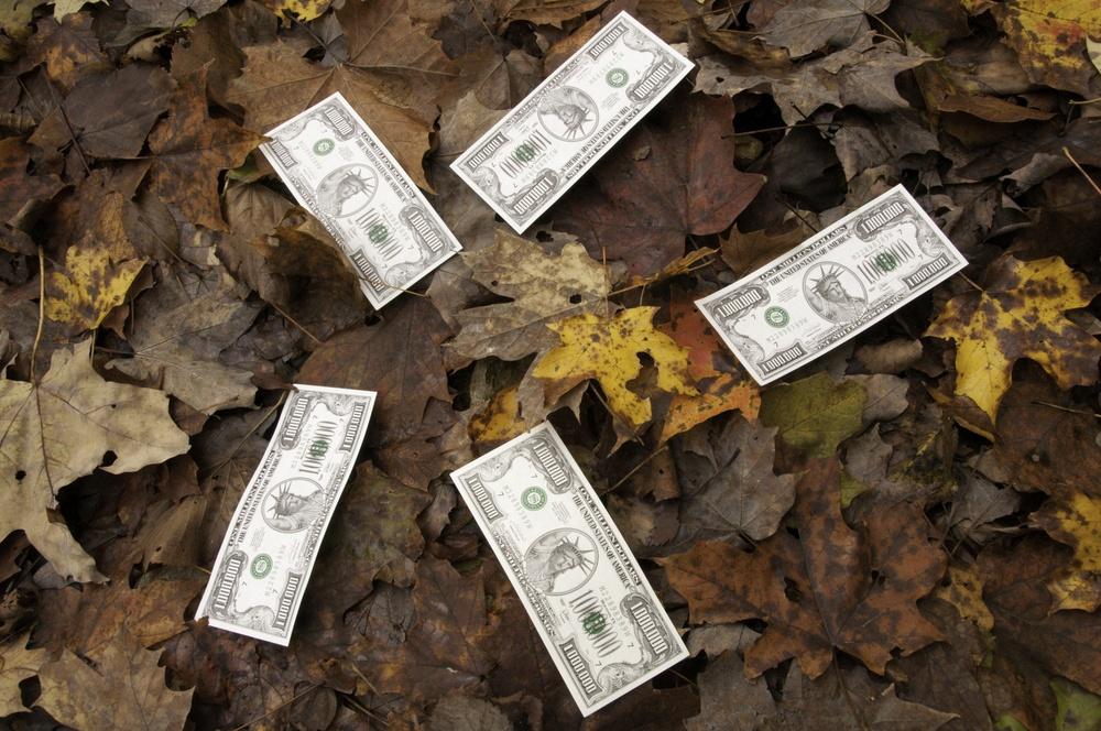 Play money grown on trees Five million-dollar bills on top of fallen autumn leaves