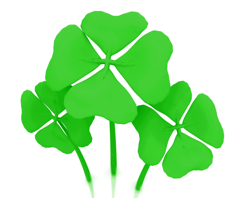 Green clovers isolated over a white background.jpeg